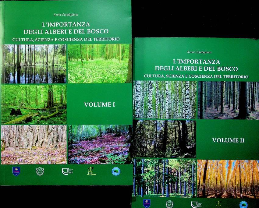 L'importanza degli alberi e del bosco.