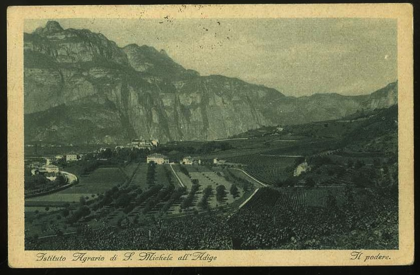 Istituto Agrario di S.Michele all'Adige. Il podere.