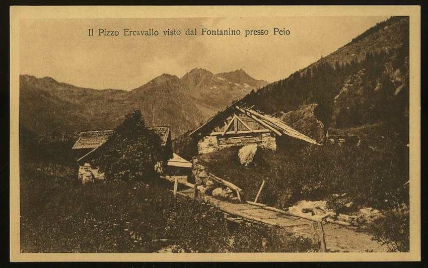 Il Pizzo Ercavallo visto dal Fontanino presso Peio.