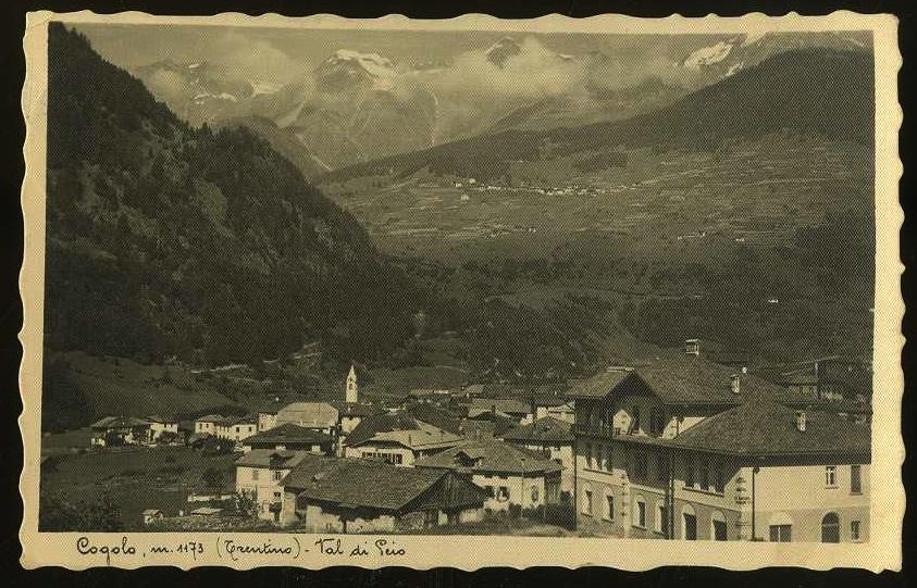 Cogolo m. 1173 (Trentino). Val di Peio.