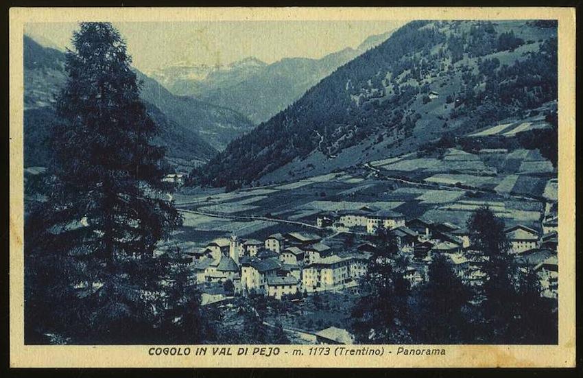 Cogolo in Val di Pejo m. 1173 (Trentino). Panorama.
