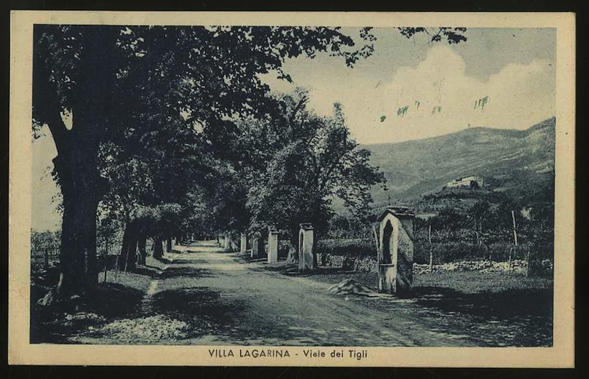 Villa Lagarina. Viale dei Tigli.