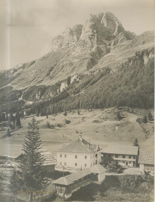 11531b. Kärnten Plöcken m. Celon.