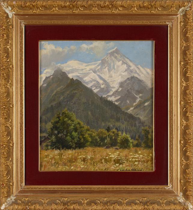 L'Aiguille du goter vue de Treomex. Chamonix.