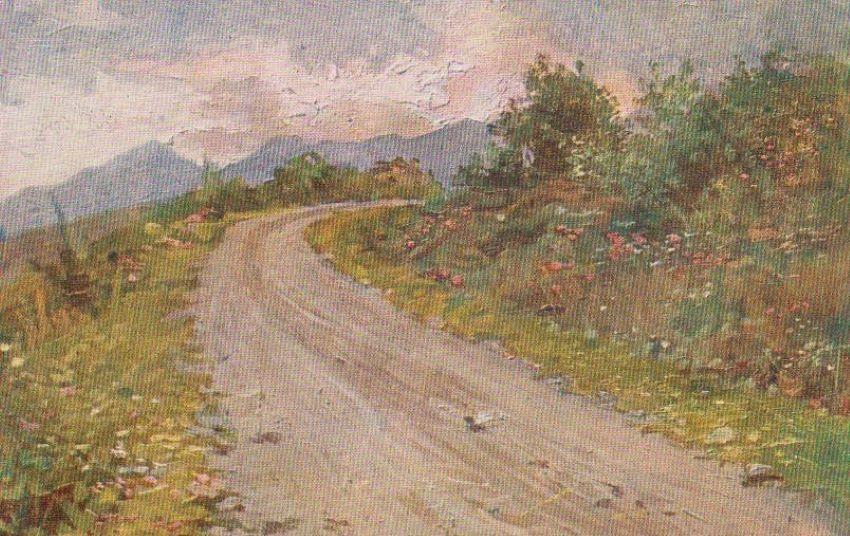 Il Trentino pittoresco.