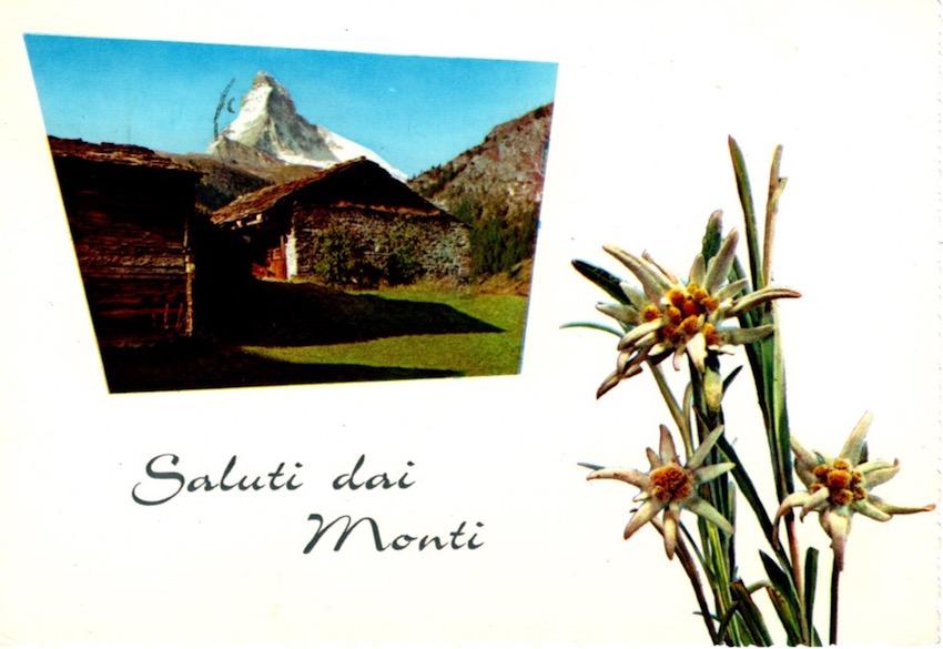 Saluti dai Monti. Baita Bambi, Monte Velo - alt. m. 1100.