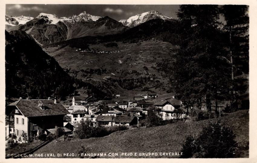 Cogolo m. 1146 (Val di Pejo) - Panorama con Pejo e Gruppo Cevedale.