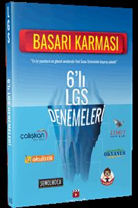 6'lı LGS Denemeleri Başarı Karması