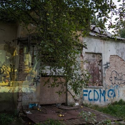 Photo #4 from the Forgotten Things Project