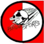 Logo de Bruay Sports