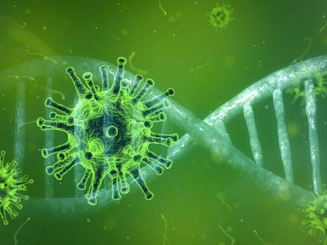 Coronavirus: Notverordnung unterzeichnet