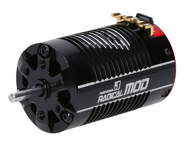 P1 Radical 690 Modified Motor bei Performa Racing