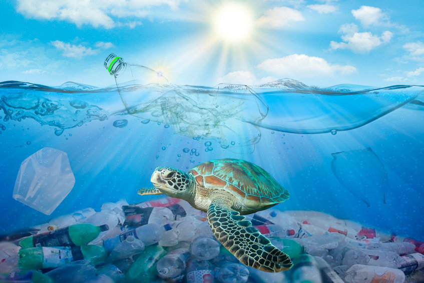 Garbage-collection-ocean-innovation