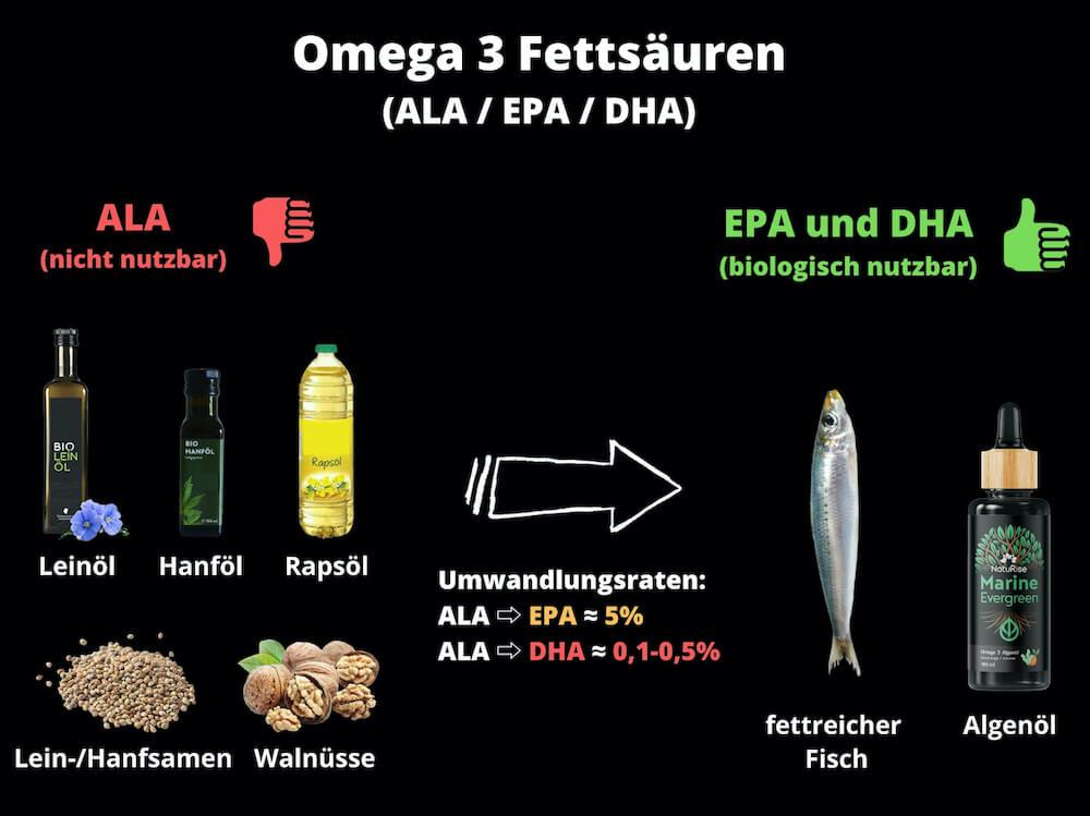 algenoel-omega-3-fettsaeuren-ala-epa-dha