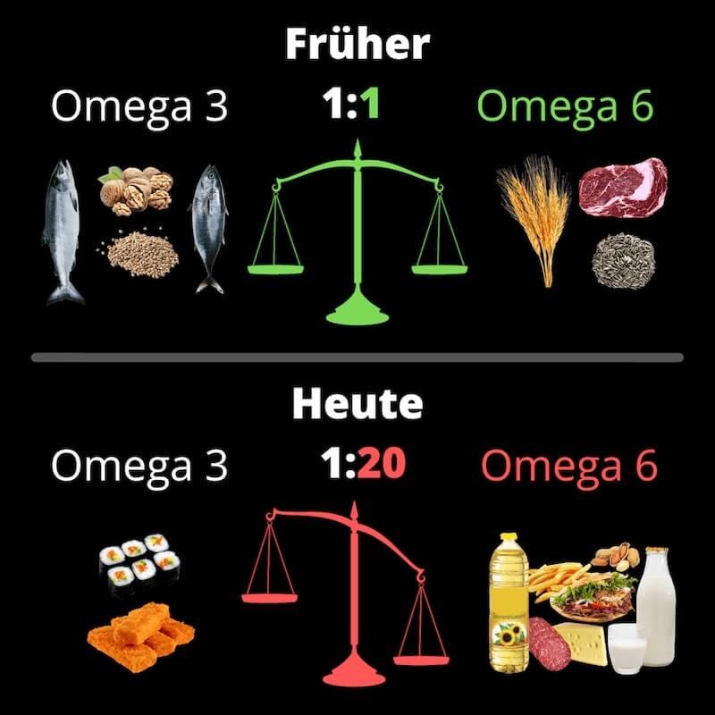 algenoel-omega3-omega6-gleichgewicht-lebensmittel-omega-3