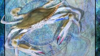 Ζώδια αστρολογικές προβλέψεις 2015 Καρκίνος