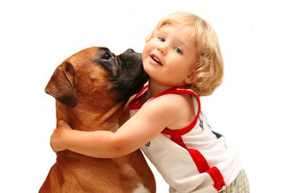 σκύλος συναίσθημα astrolife