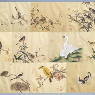 Chinese school, ink and colours on silk, 19th/20th C.: Ten paintings of birds between blossoming branches