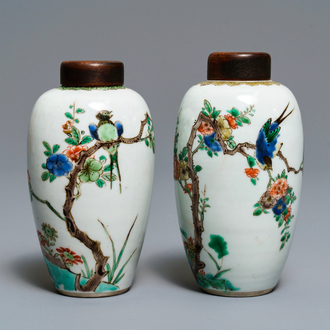 Two Chinese famille verte vases with birds on blossoming branches, Kangxi