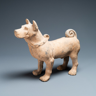 A large Chinese grey pottery model of a dog, Han