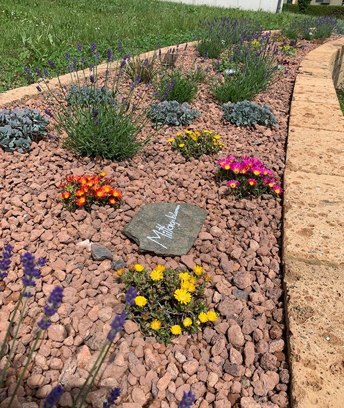 Klimafitter Garten
