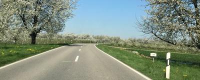 Straße im Frühling