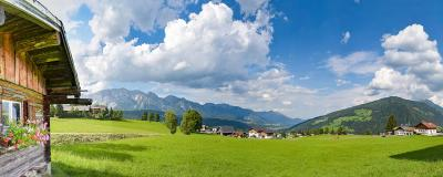 Blick auf Alpenwiese