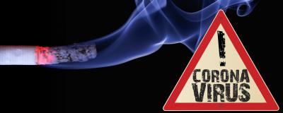 Corornvirus und Nikotin