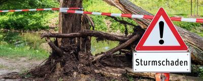 Achtung Sturmschaden Baum