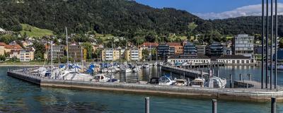 Blick vom Bodensee auf Bregenz.
