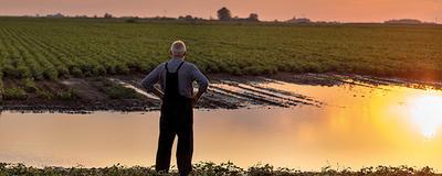 Bauer blickt auf ein überschwemmtes Feld.