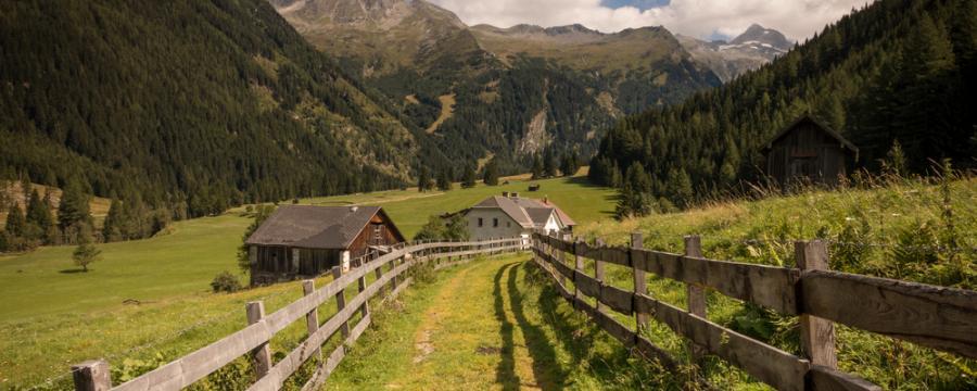 Mallnitz - Grüne Wiesen