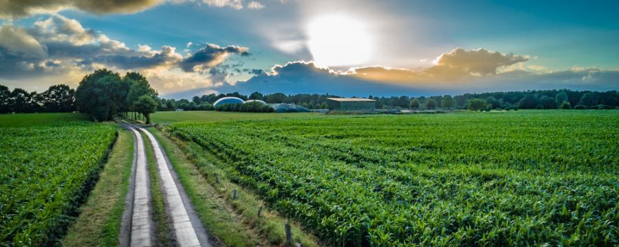 Biogasanlage auf dem Land