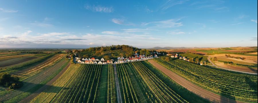 Galgenberg in Wildendürnbach