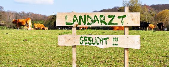 """Schild """"Landarzt gesucht"""""""