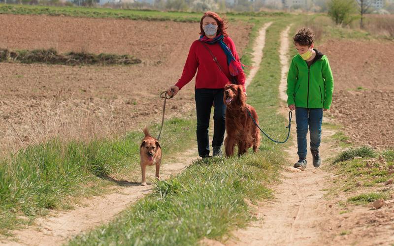 Familie beim Spazierengehen mit Mund-Nasen-Schutz