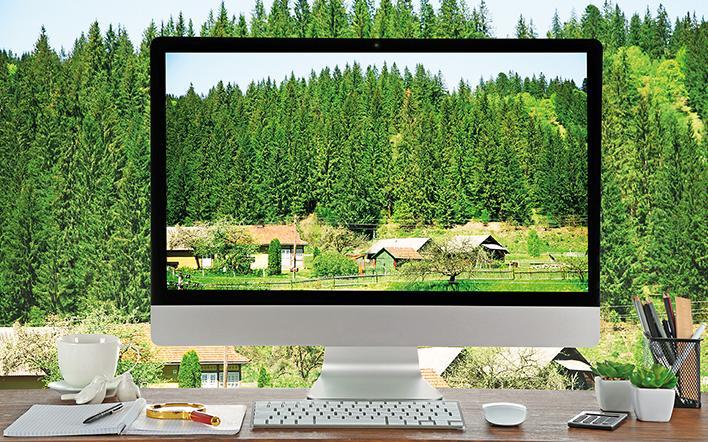 Bildschirm mit Wald darauf