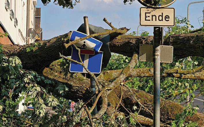 Durch Sturm und umgekippten Baum zerstörte Straßenschilder