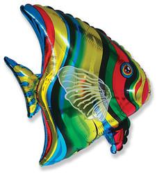 26''(66см) шар   фигура тропическая рыба