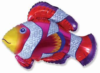 34''(86см) шар   фигура рыба-клоун фуше