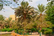 أراضي للبيع في جدة