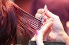 Steinhoff Haardesign - Friseur - Bild 3