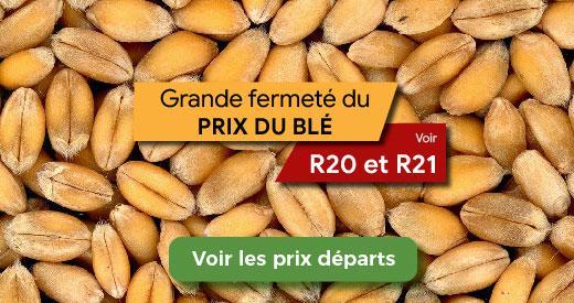 vente blé prix haut