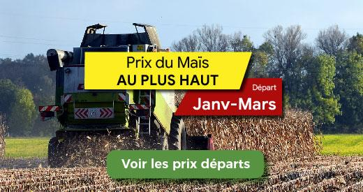 prix maïs grain vente