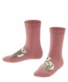 Socken Bear Family