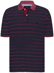 Polo, Finestripe