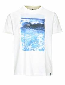 Staccato BASEFIELD ORGANIC COTTON T-Shirt SEA