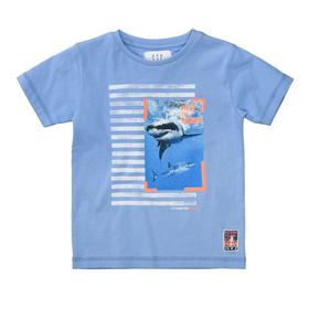 Staccato T-Shirt THE SHARK