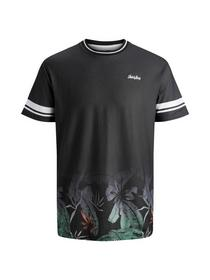 JORLEAF TEE SS CREW NECK - 175706001/Tap Shoe/BOX