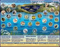 Биоразнообразие Иссык-Куля: редкие и исчезающие виды